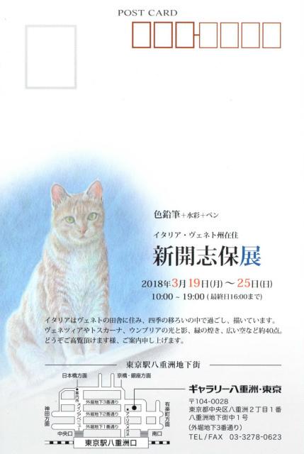 43-s+東京展DM_1.jpg