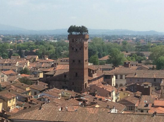 11-Guinigi Tower-Lucca .  torre delle ore.jpg