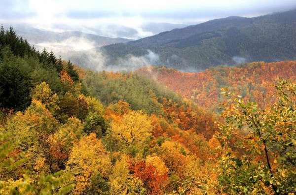 13-1-autunno-sull-appennino-tosco-emiliano.jpg