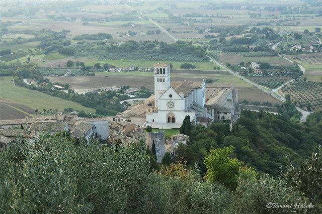 15-Assisi 2014 IMG_0494_GF.jpg