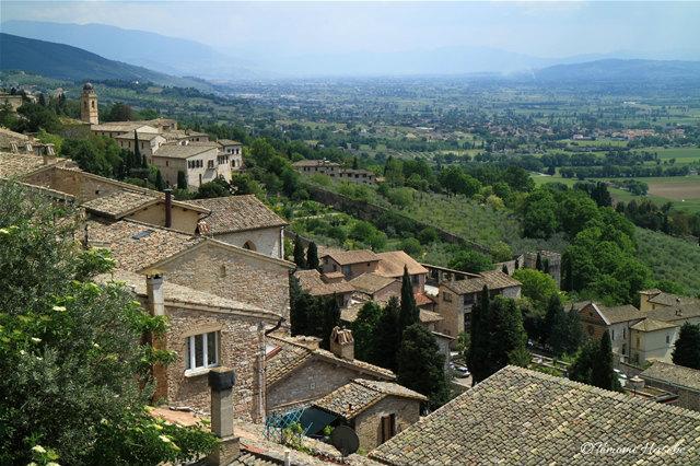 16-Assisi 2016 IMG_5321_GF.jpg