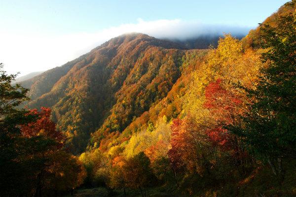 18-Parco Nazionale delle Foreste Casentinesi .jpg