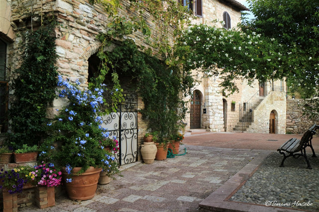 20-Assisi 2016 IMG_6454_GF.jpg