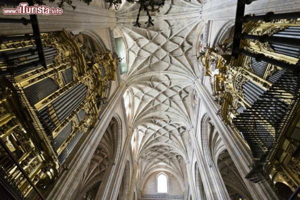 4-3-soffitto_e_organo_cattedrale_segovia.jpg
