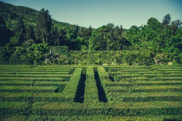 5-3-labirinto-al-giardino-barbarigo.jpg