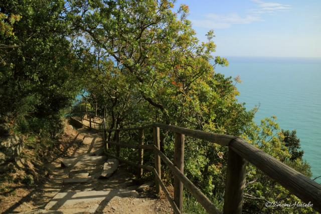 6-Monterosso al Mare _ Vernazza 2016 IMG_3434.jpg
