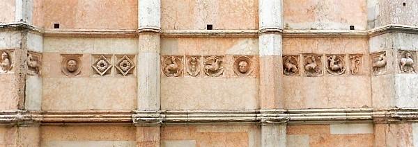 6-Parma-Zooforo- - Copia.jpg