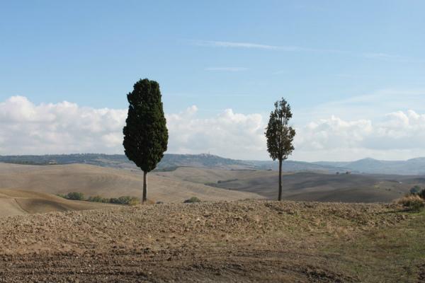 6-landscape-9.jpg
