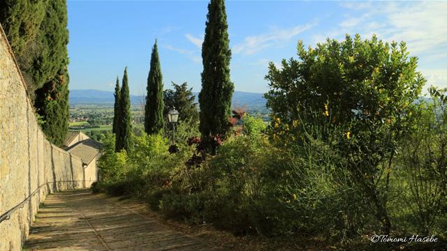 7-Assisi 2017 IMG_7815_GF.jpg