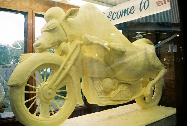 s22-cow-on-motorcycle.jpg